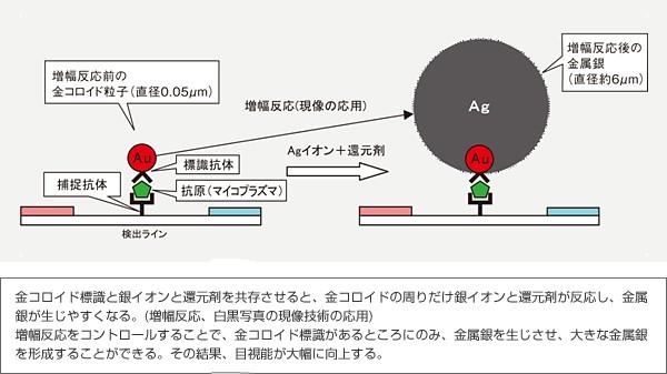 富士フィルム 画像2